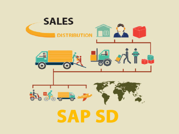SAP SD End User Certification Training Zenfotec